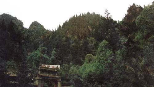 国家级森林公园吐鲁沟