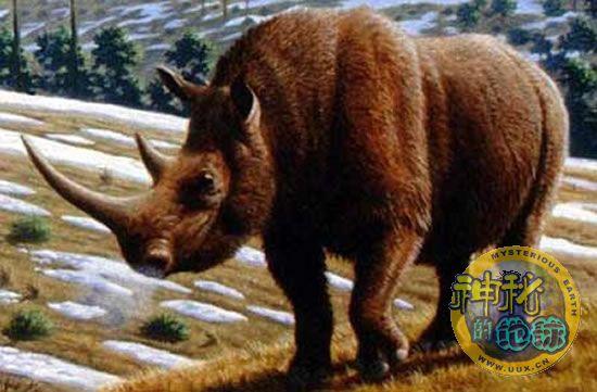 和政古动物化石博物馆是中国唯一的一座古脊椎动物化石博物馆,是继四川自贡恐龙化石博物馆、西安半坡民族社会遗址之后兴建的全国为数不多的中国国家级专业博物馆之一,化石博物馆是向世人展示中化瑰宝的窗口,每个热爱大自然的人来到这里,心灵都将经历一次莫大的震撼!