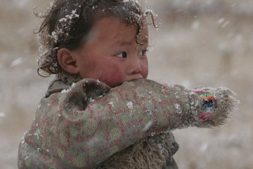 雪雨中的藏族小孩儿