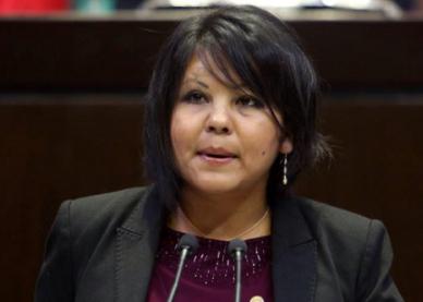 墨西哥:上任仅一天 女市长住所内被枪杀