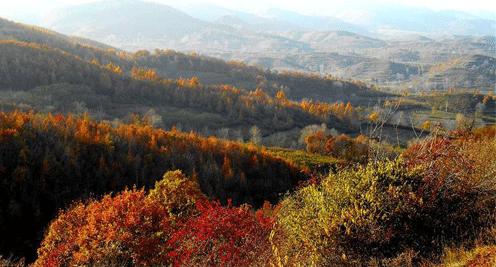 【摄影】五彩斑斓 田园秋景入画来
