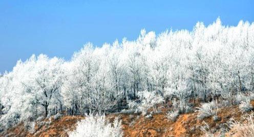 甘肅山區現霧凇美景