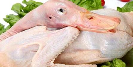 秋季吃什麼肉?首選鴨肉