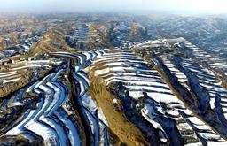 航拍雪後梯田:線條蜿蜒 美如畫卷