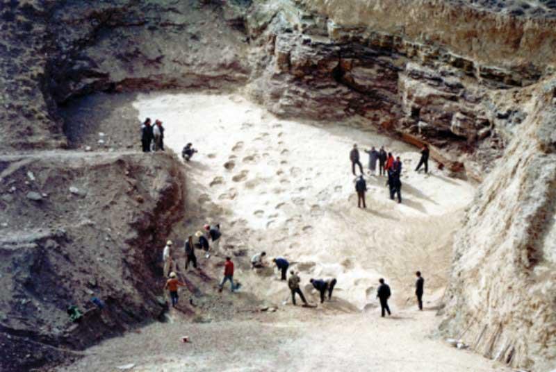 恐龍國家地質公園[世界罕見]