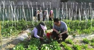 蘭州人的田居生活 :租塊地 自耕自種自收