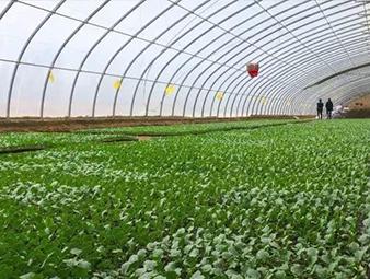 永昌县不断改善农业生产条件
