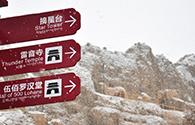 肃南县祁丰藏族乡喜降瑞雪