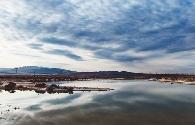 美丽的景泰白墩子盐沼国家湿地