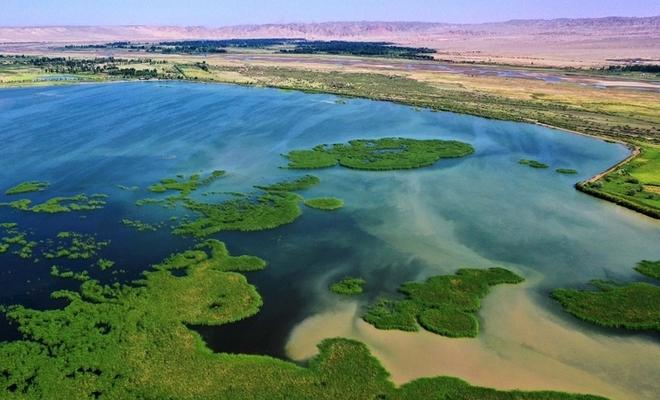 航拍黑河湿地天鹅湖