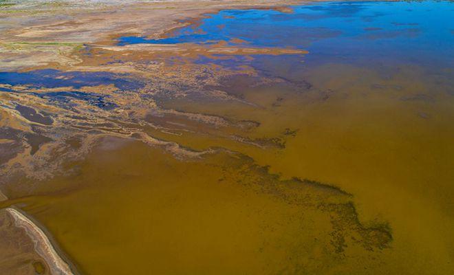 航拍景泰白墩子湿地 色彩瑰丽似花毯