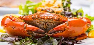 这几类人不宜吃螃蟹