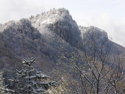 蓮花山冬景